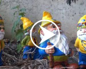 The Origin of Our Company Mascot: Poe The Gnome