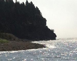 Fundy